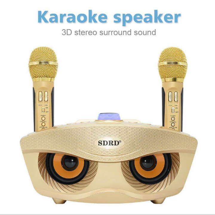LOA BLUETOOTH KARAOKE SD-306